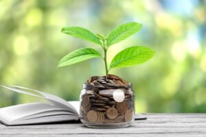 diferenças entre poupar e investir